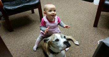 Gym in Nanuet NY, Rockland county, for the entire family, baby with dog