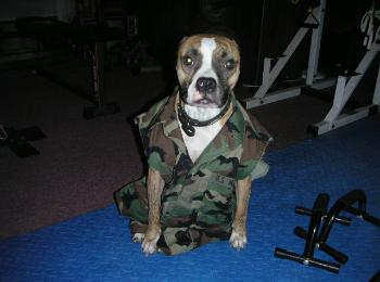 Tyson at Boot camp training, ready for war